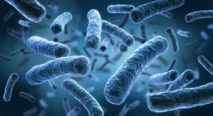 Legionellen im Waser (stark vergrößert)