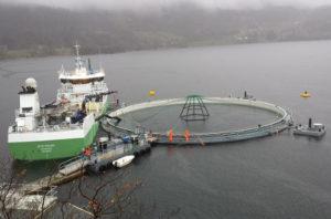 Aquakultur mit Versorgungsschiff im Fjord